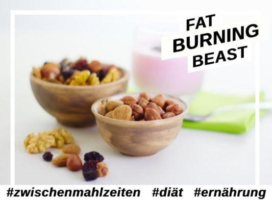 Zwischenmahlzeiten-Ernährung-diaet