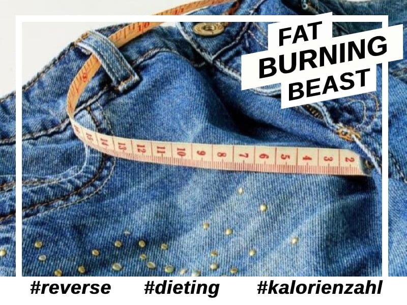 Reverse Dieting-kalorienzähler- Diät.