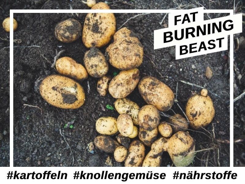 Antioxidantien-Kartoffeln