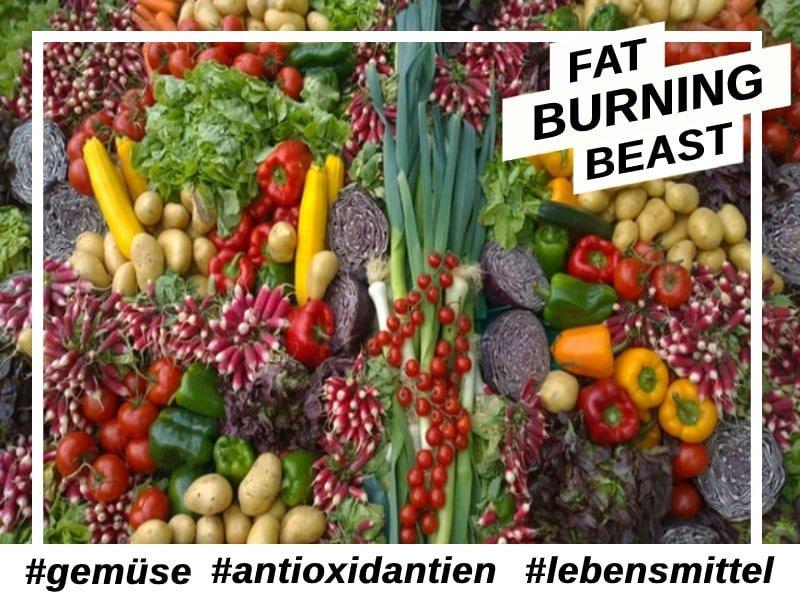Antioxidantien- Freie Radikale