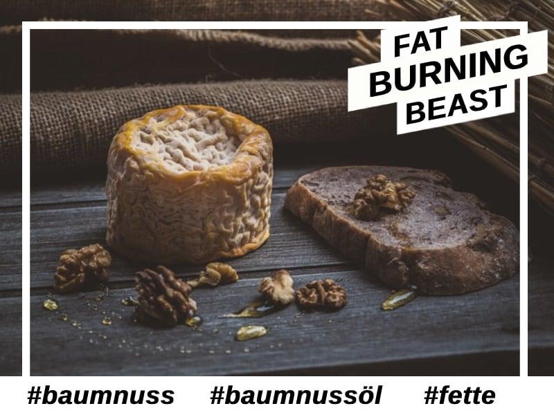 Baumnuss-Antioxidantien