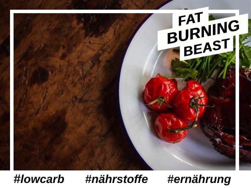 Low Carb Ernährungsplan Fettabbau.