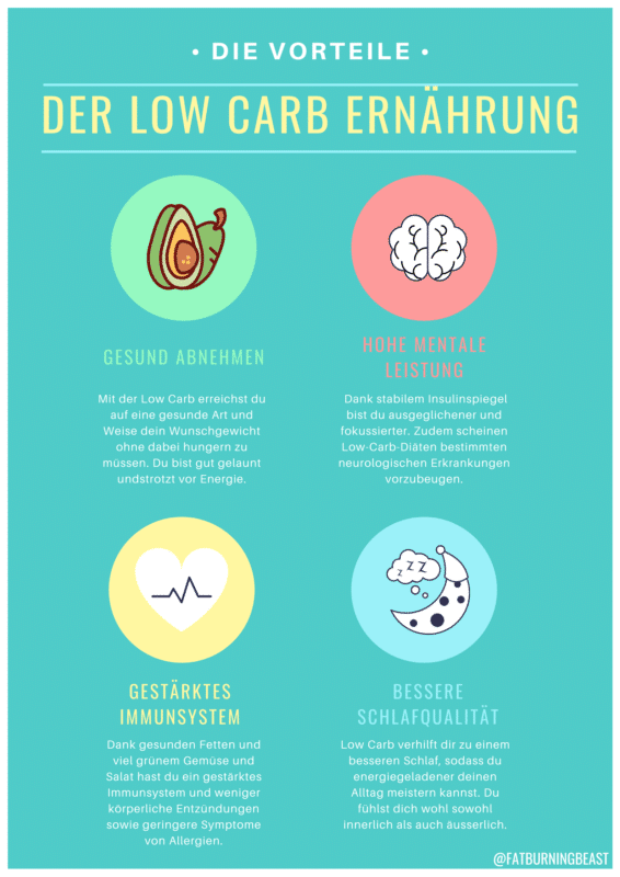 Low Carb Ernährung Infografik