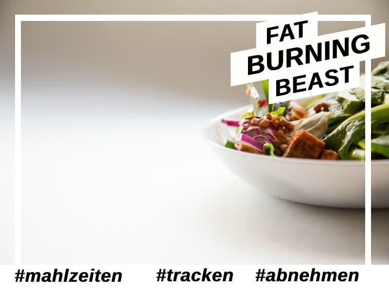 Mit dem tracken von Mahlzeiten abnehmen