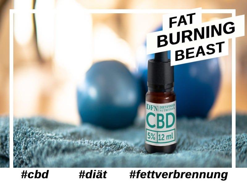 CBD-Fettverbrennung