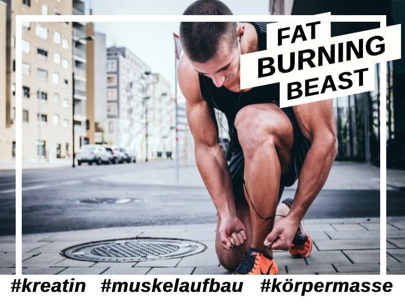 Kreatin erhöht die Muskelmasse