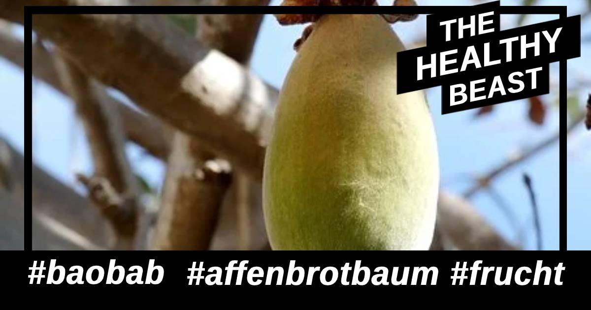Baobab ist auch als Affenbrotbaum bekannt. Aus der Frucht wird das dann das Pulver gewonnen.