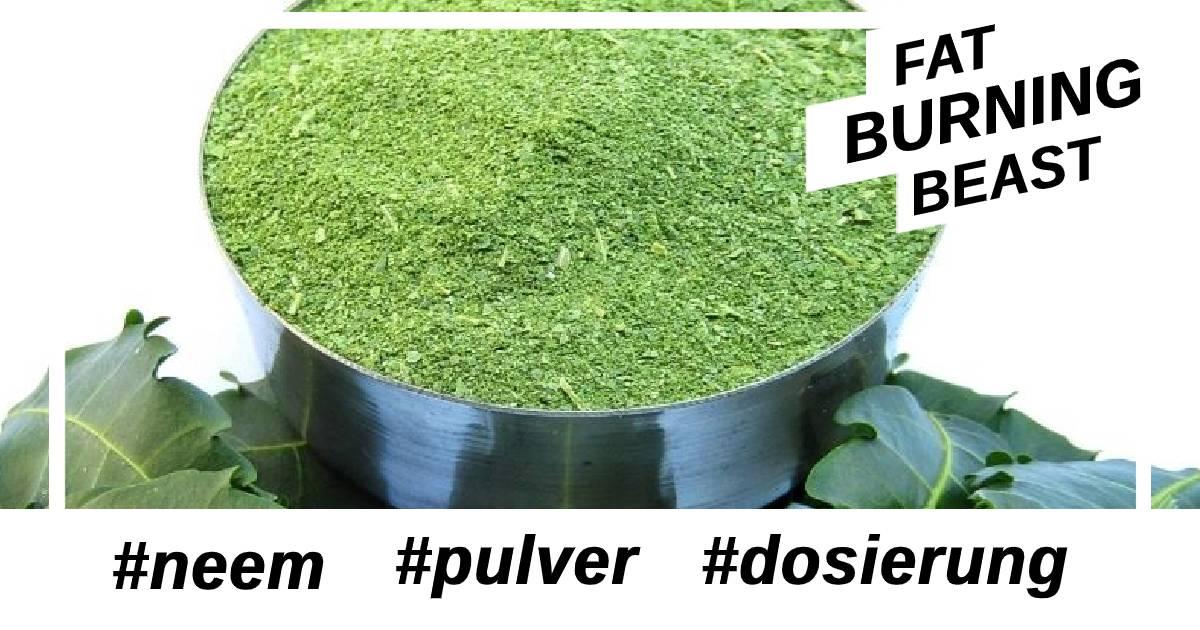 Was ist die geeignet Dosis für Wirkung Neem Pulver?